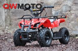 QW Moto ATV Mini Hunter 49cc